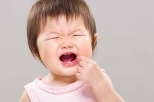 五个月宝宝可以吃磨牙棒吗磨牙棒的作用